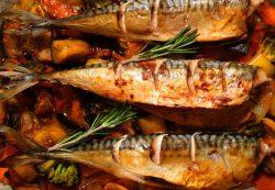Запеченная скумбрия – вкусные рецепты от ЯБпоела