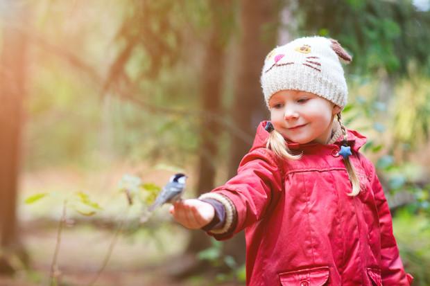Синичкин день: почему его стоит отметить вместе с ребенком