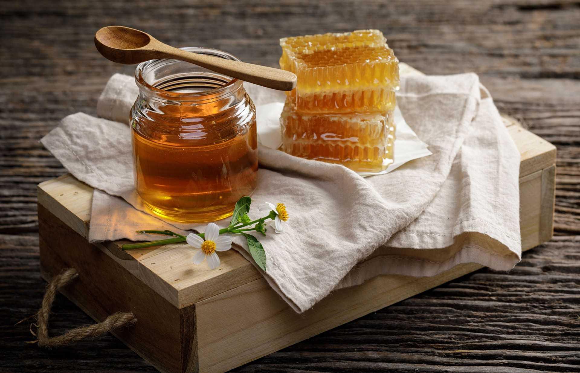 Лесной мед: свойства, особенности, целебные качества продукта